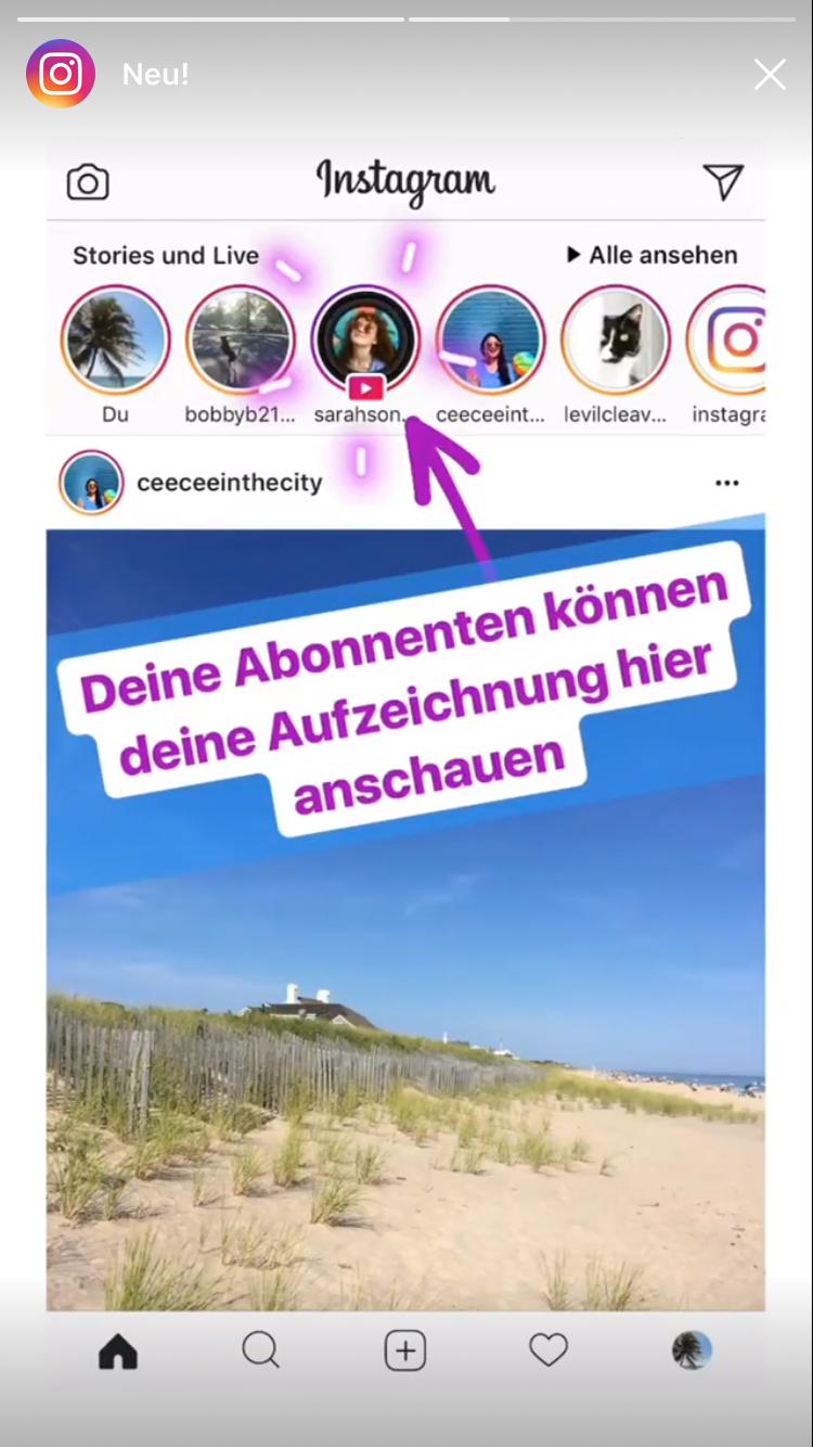 Instagram bilder anschauen